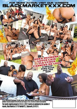 Block Party - The Chillin and Grillin Orgy (2014) WEBRip